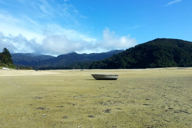 abel tasman national park low tide crossing
