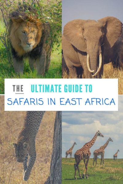 safaris-east-africa