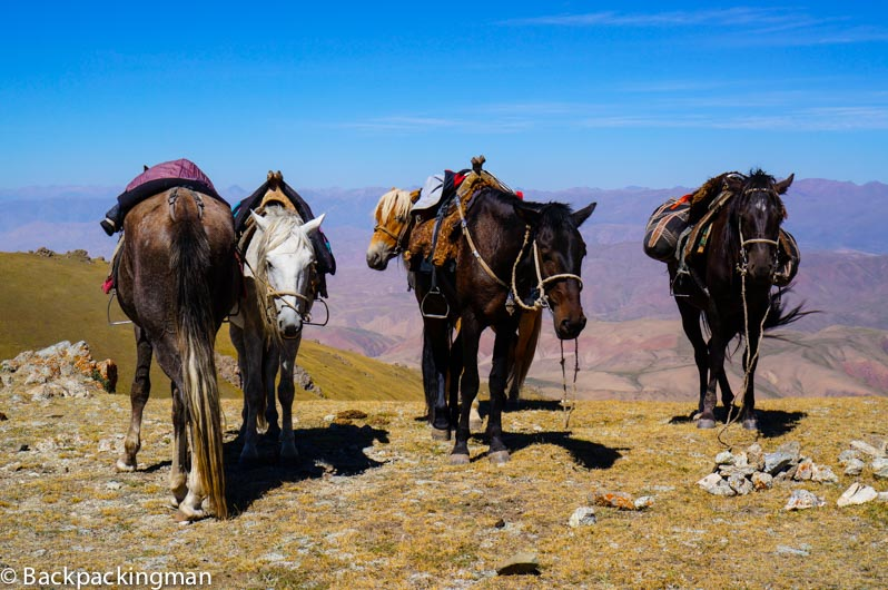 Horses on mountain pass.