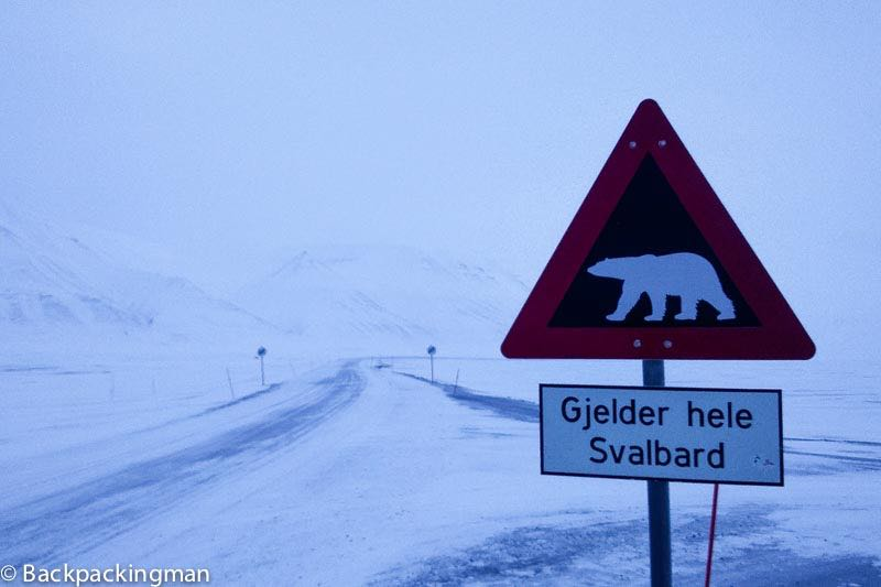 Polar bear sign Svalbard