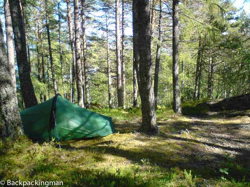 Camping in Finland forest