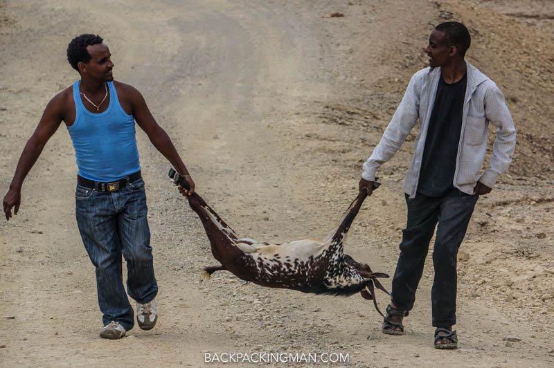 eating goat in ethiopia