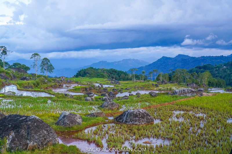 Beautiful Hiking In Tana Toraja