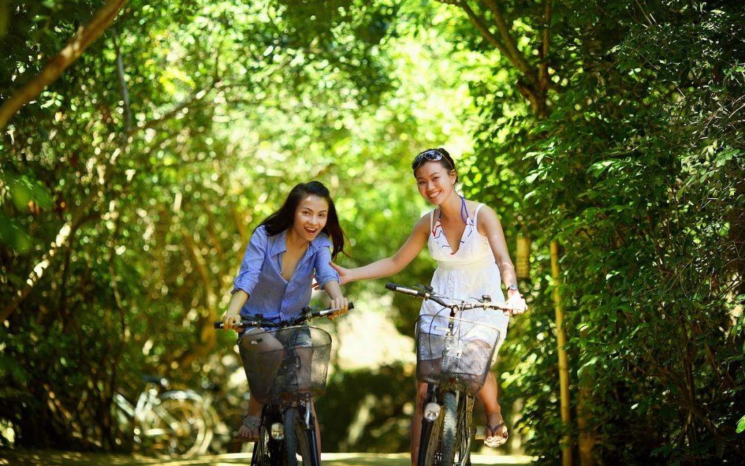 Cycling Osaka To Nara On Japan's Steepest National Road