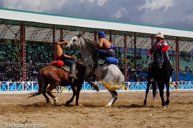 Horse wrestling in Kyrgyzstan World Nomad Games