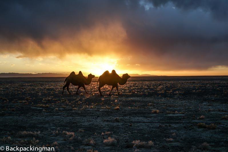 Sunset in the Gobi Desert.