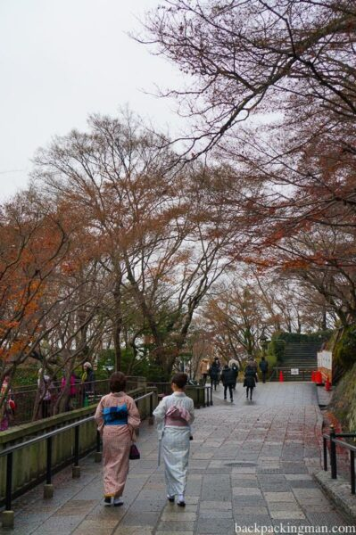 traditionally-dressed-women-kimono-kyoto-japan