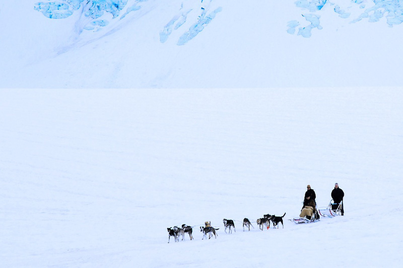 Best Places To Go Dog Sledding In May