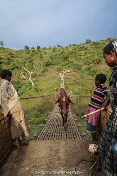 crossing bridge in ethiopia