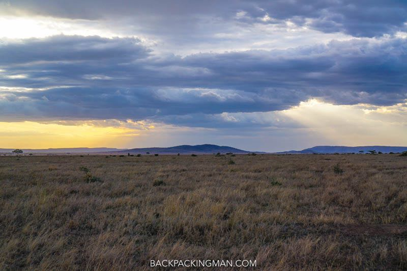 safari in serengeti