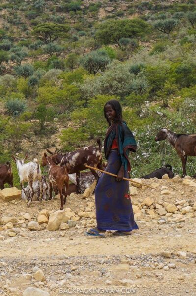 goat herder in ethiopia