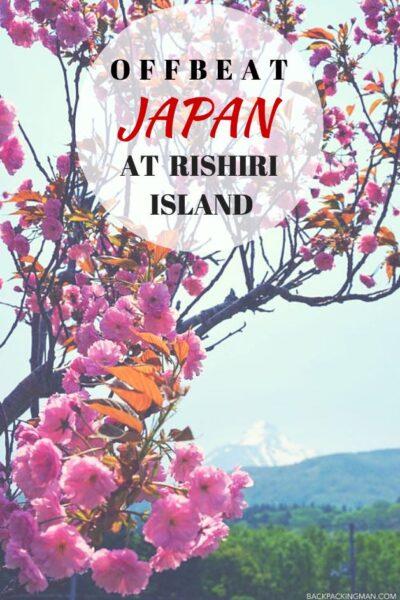 cherry-blossom-japan-rishiri