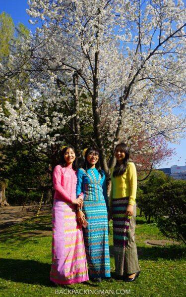 cherry-blossom-sapporo-japan-10