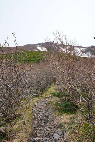 climbing-mount-rishiri-japan-1