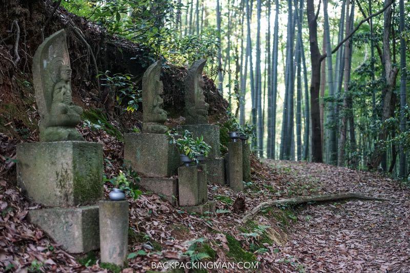 bamboo forest Nara