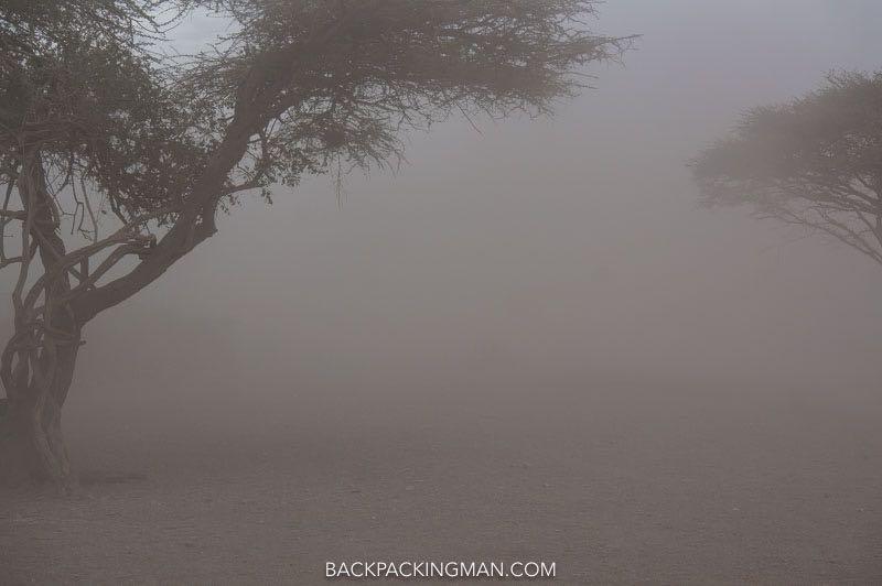 dust-storm-serengeti