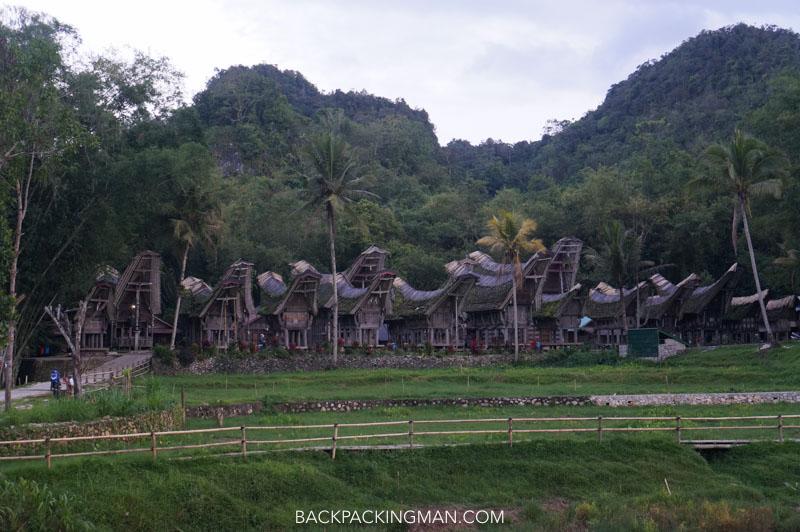 tana toraja village houses