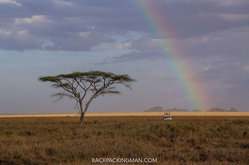 serengeti-safari-1