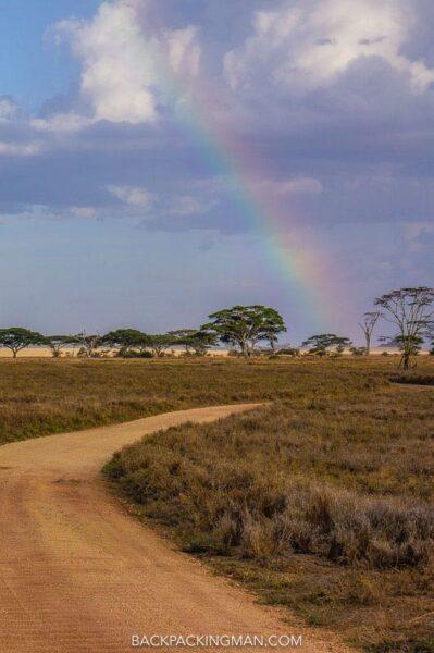 serengeti-safari-2