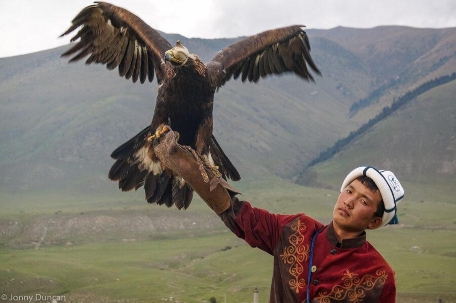 kyrchyn-nomad-eagle
