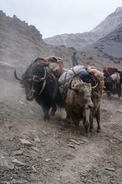 hiking-afghanistan-pamir-mountains