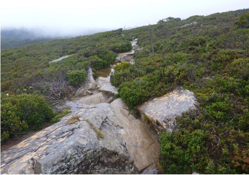 overland track hike