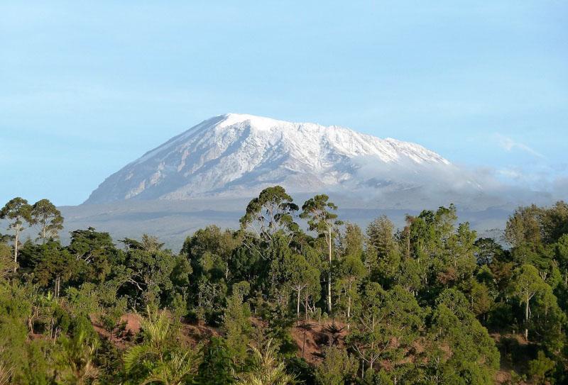 climbing mt kilimanjaro