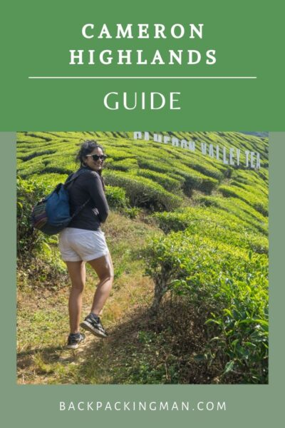 Cameron Highlands guide