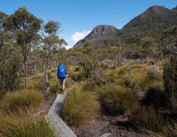 5 Of The Best Hikes in Australia (Hiking Australia)