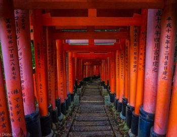 Kyoto Must See Tourist Sites (A Kyoto 1 Day Itinerary)