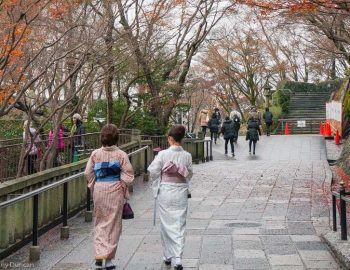 Japan in Autumn (The Pros and Cons of Visiting)