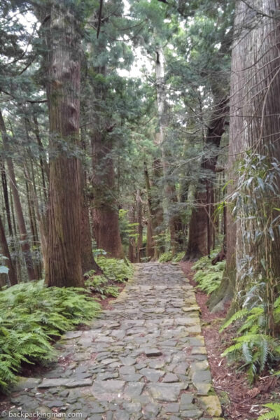 kumano kodo trail Japan