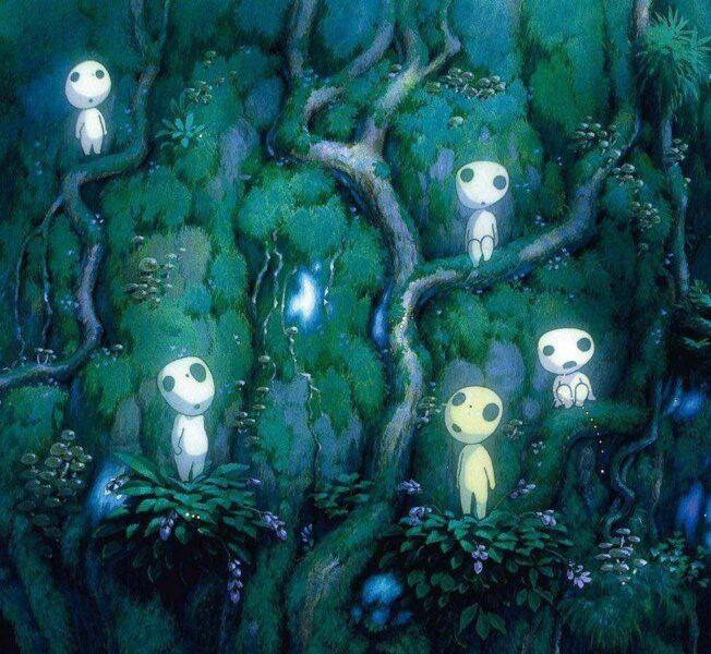 Yakushima Island forest princess mononoke