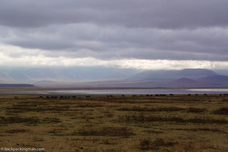 Ngorongoro sfarai Tanzania