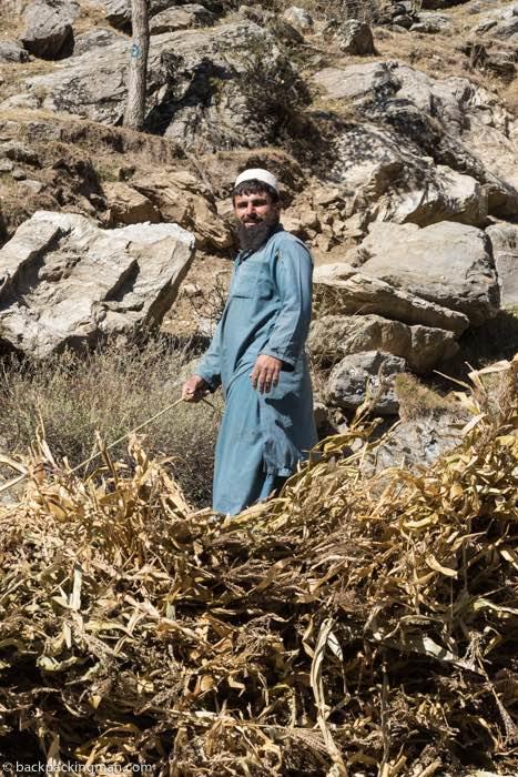 harvest Kaghan Valley Pakistan