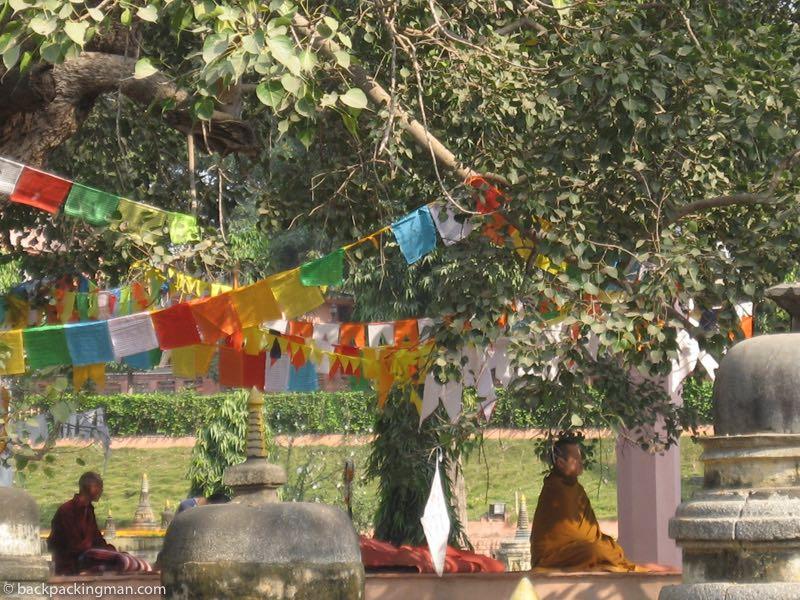 meditating bodh gaya