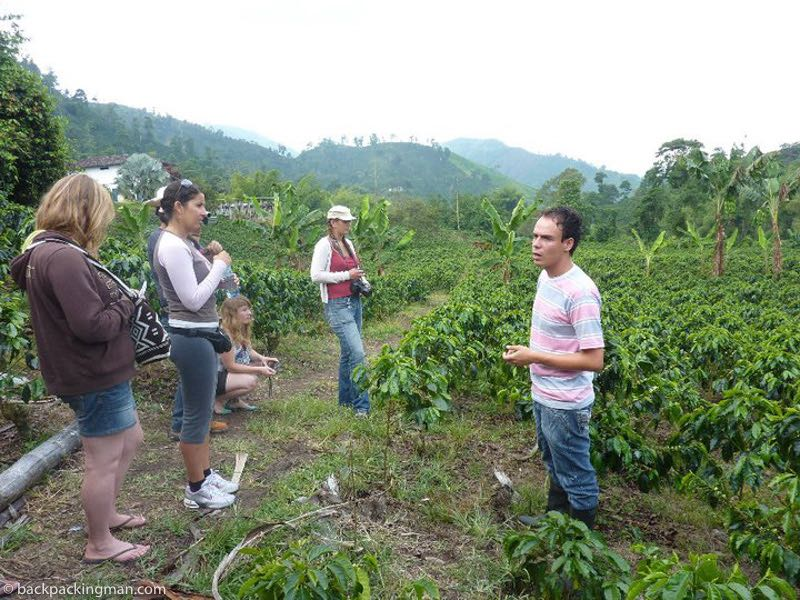 coffee tour Columbia