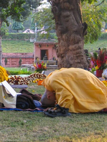 tibetan monk in india praying