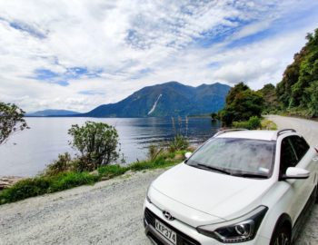 Fox Glacier Town Guide  (In New Zealand's Beautiful Countryside)