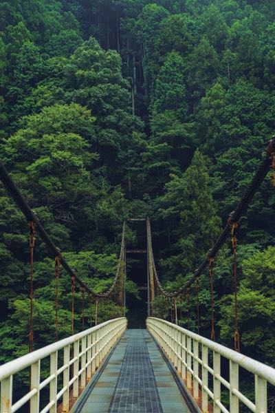 hiking in Japan bridge