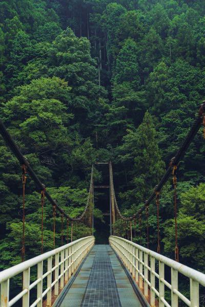 hiking in Japan bridge