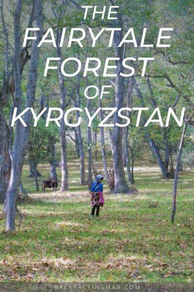 Kyrgyzstan forest in Arslanbob