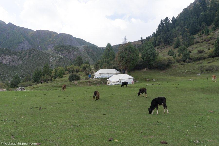 hakapun camping Hunza