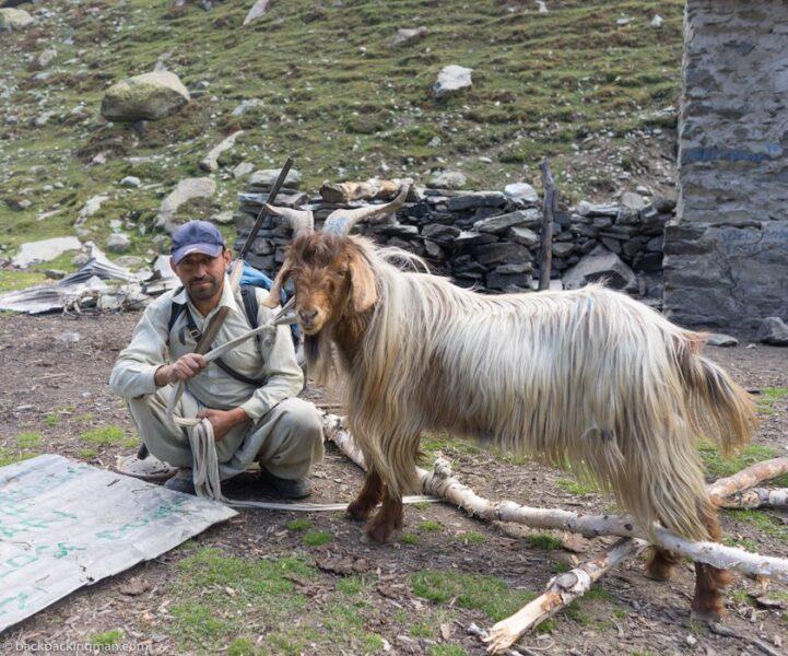 farmer at Rakaposhi base camp
