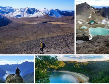 Tramping In New Zealand (4 of The Best Great Walks)