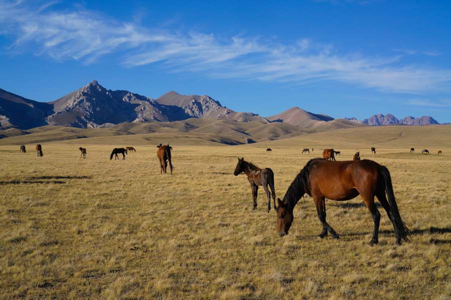 Cheapest countries to visit Kyrgyzstan